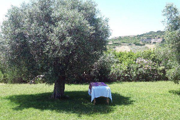 elena-martorella-massaggio-benessere-4